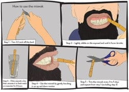 The Miswak: More Than a Convenient Twig