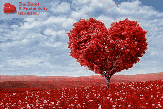 My Heart's Story: How I Revived my Heart during Tough Trials | ProductiveMuslim
