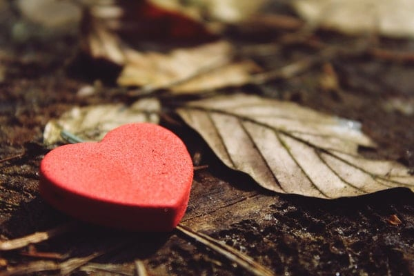 The Easiest Way to Beautify Your Heart and Character: A heart lying on soil