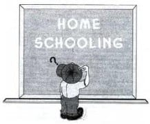 Homeschooling: A Productive Alternative?